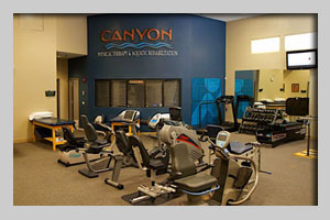 Canyon Physical Therapy - What We Treat